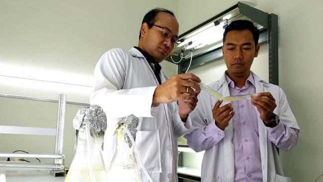 Tatas H.P. Brotosudarmo, Ph.D, dan asistennya Edi Setiyono, MSi, mengamati perkembangan bakteri Symbiont. (rhd)