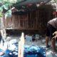 GREBEK - Petugas Satuan Reskrim, Polresta Sidoarjo menggerebek arena judi sabung ayam di Desa Sidokerto, Kecamatan Buduran, Sidoarjo dan mengamankan sejumlah barang bukti, Sabtu, (30/11/2019)