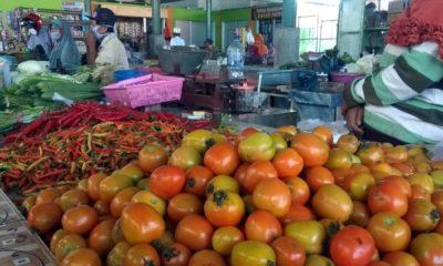 Sejak tiga minggu terakhir, harga tomat di tingkat petani hanya laku Rp 1.000 per Kg