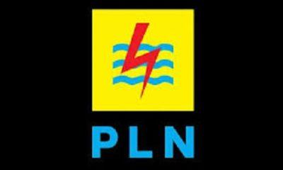 Logo PLN.