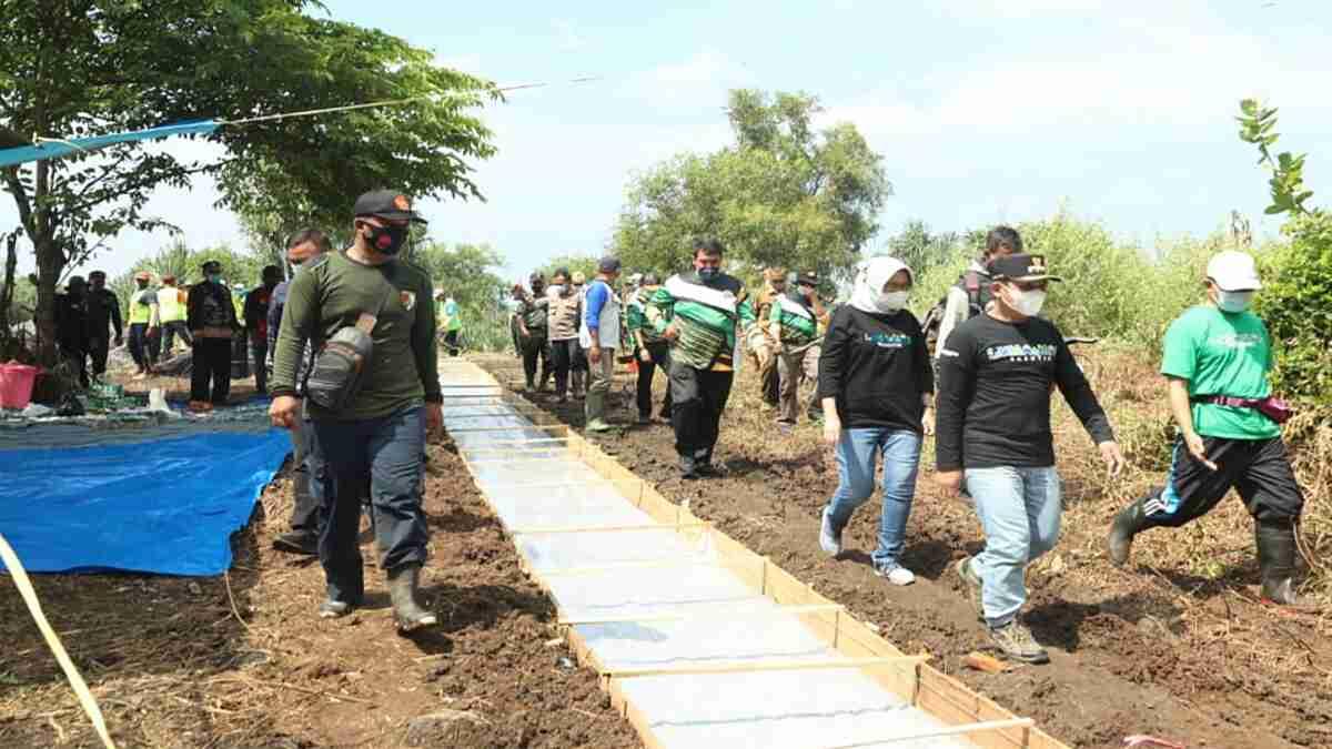 Bupati bersama Wabup Lumajang Tinjau Pembangunan Jalur Lama Pasirian - Tempursari