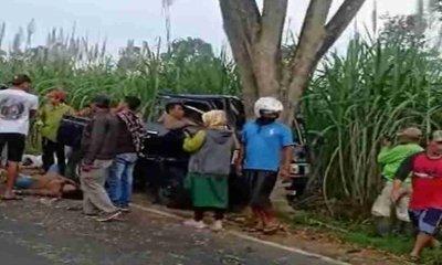 Mobil Pikap Nabrak Pohon, 7 Penumpang Tewas dan 5 Luka Berat
